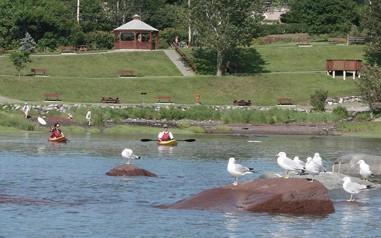 Accueil - Kayak (parc)